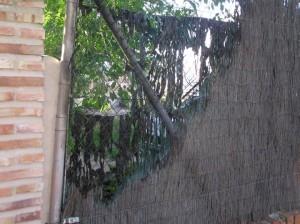 Otra imagen de la valla quemada el pasado 11 de mayo