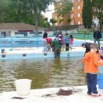 Extracción de la piscina
