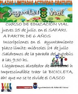 Cartel educacion vial