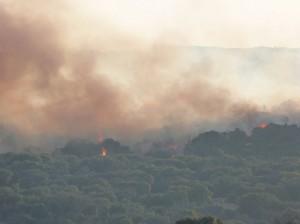 Fuego Valdemorillo 2013 (1).JPG