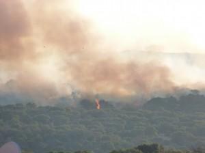 Fuego Valdemorillo 2013.JPG