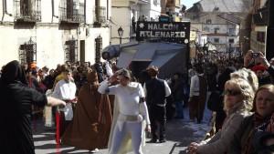 Carnaval Cebreros2015) (20)