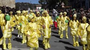 Carnaval Cebreros2015) (7)