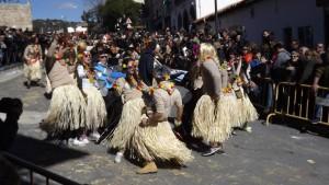 Carnaval Cebreros2015) (9)