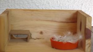 Interior de uno de los nidos.