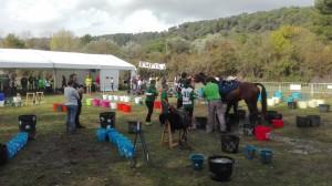 Raid hípico Copa Interautonomías (6)