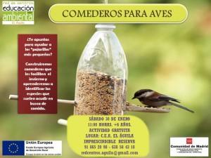 30 Enero comederos aves
