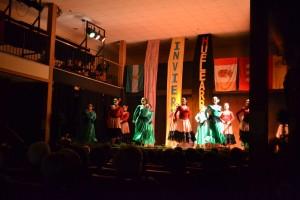 Festival Huelearromero(7)