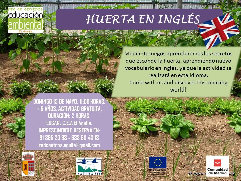 15 MAYO - Huerta en inglés