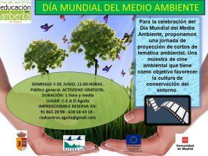 Domingo 5 Junio - Día mundial medio ambiente
