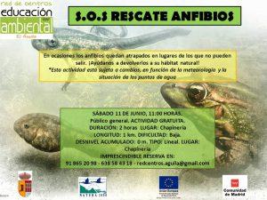Sábado 11 Junio - S.O.S Rescate anfibios