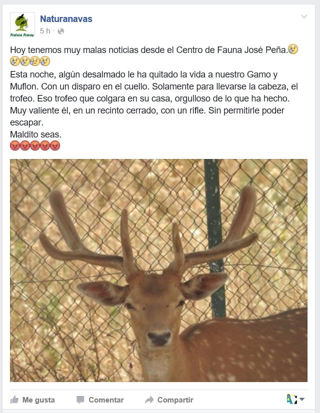 Gamo Naturanavas Facebook