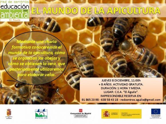 8-diciembre-apicultura