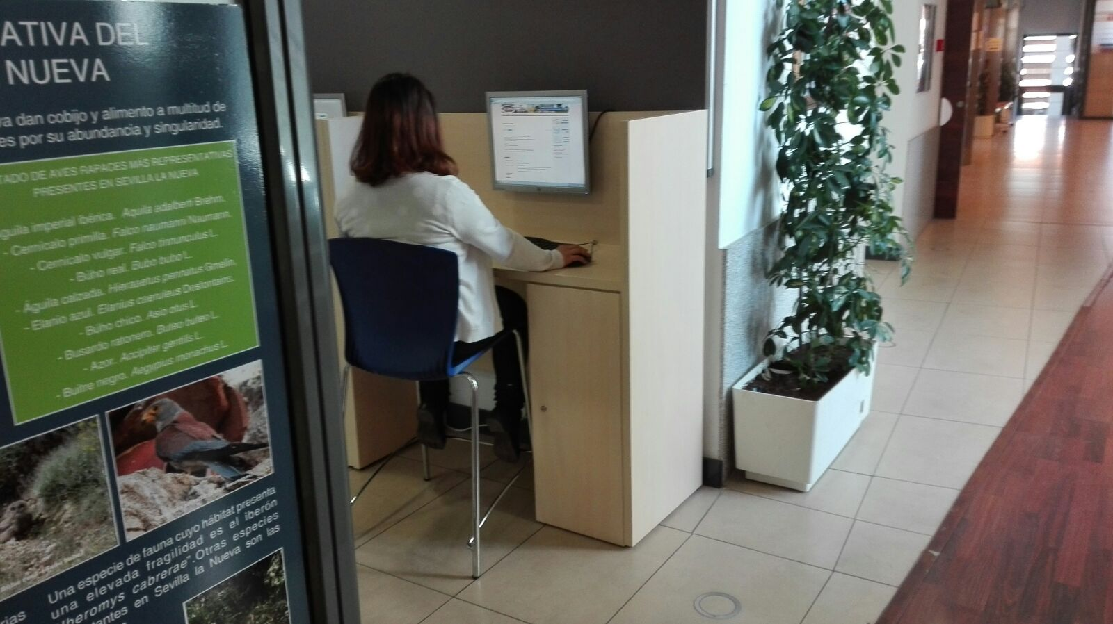 Empleo a21 peri dico gratuito sierra oeste de madrid for Consulta demanda de empleo
